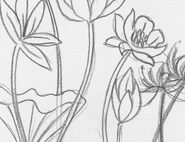 Bocetos-mini