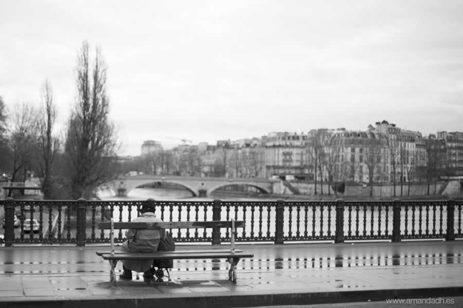 sena bridge