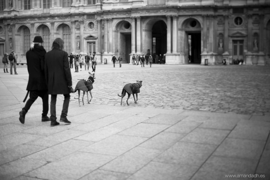 elegant people in paris
