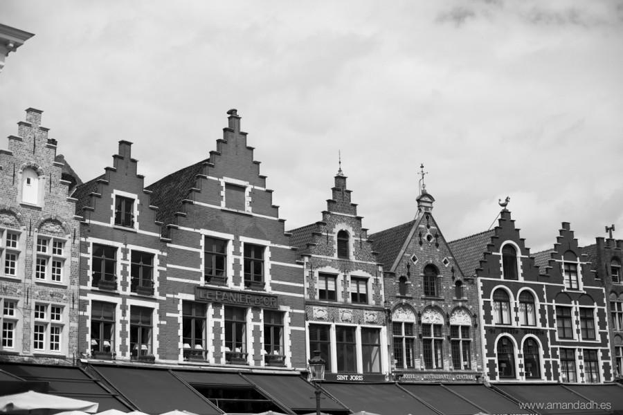 belgica-6051