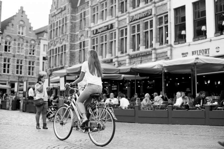 belgica-6072