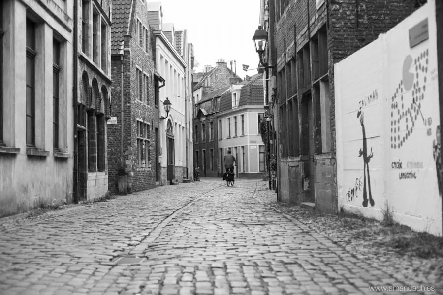 belgica-6199