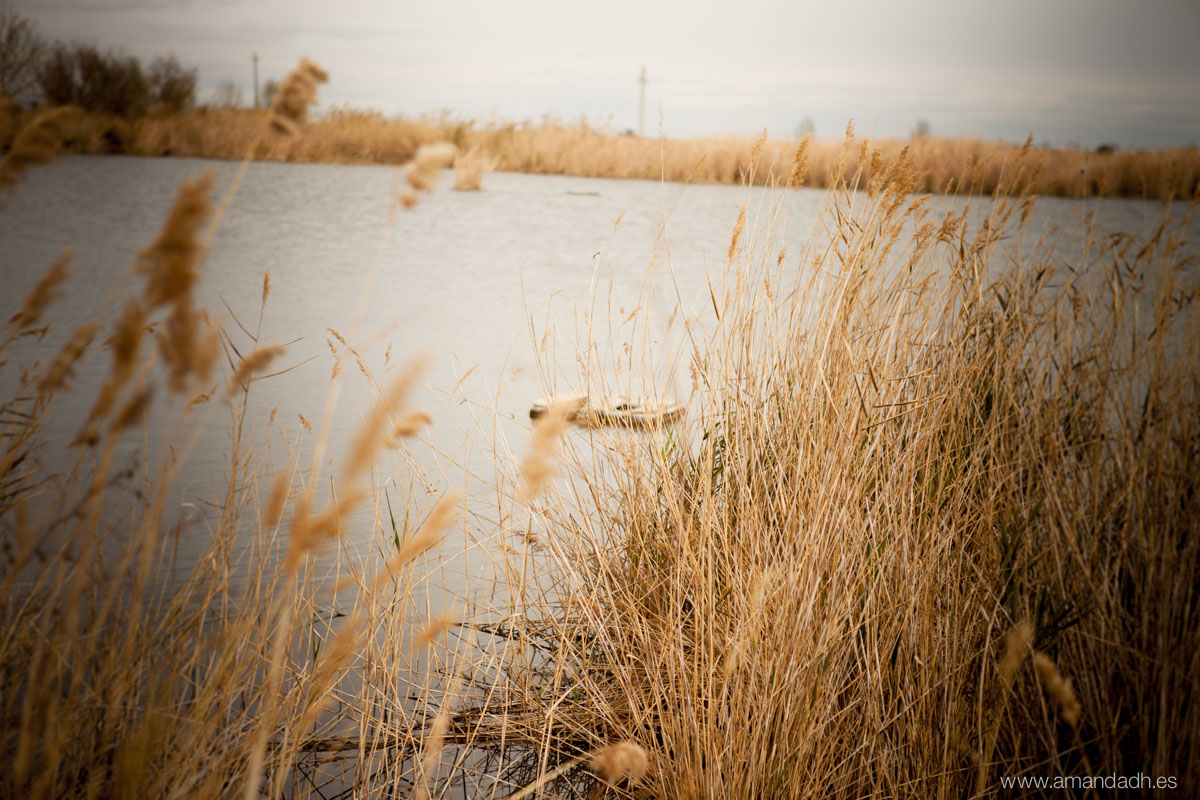 preboda en un lago