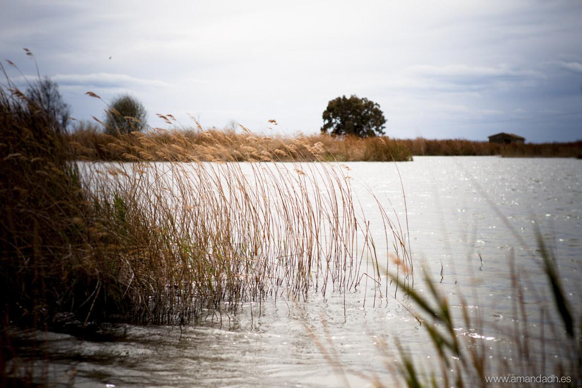 preboda en lago