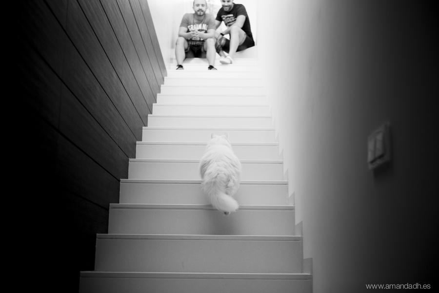 preboda y escaleras