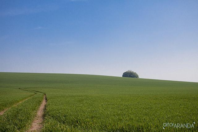 Leicestershire-Aitor Aranda