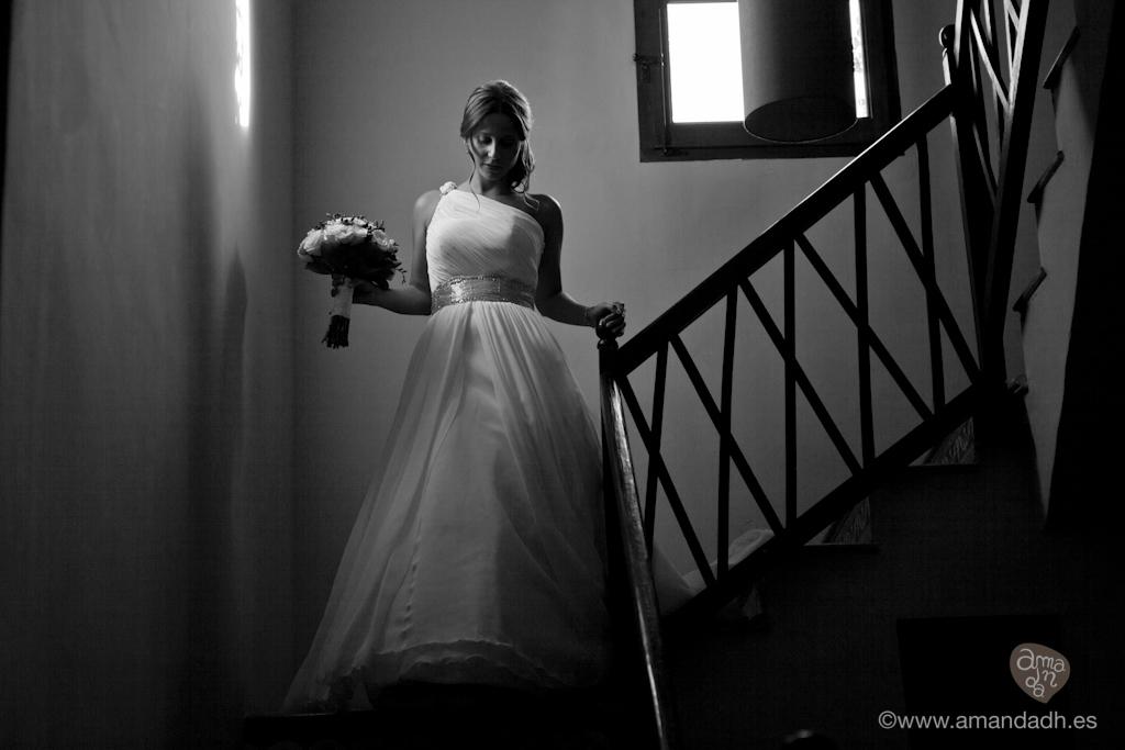 wedding-8679