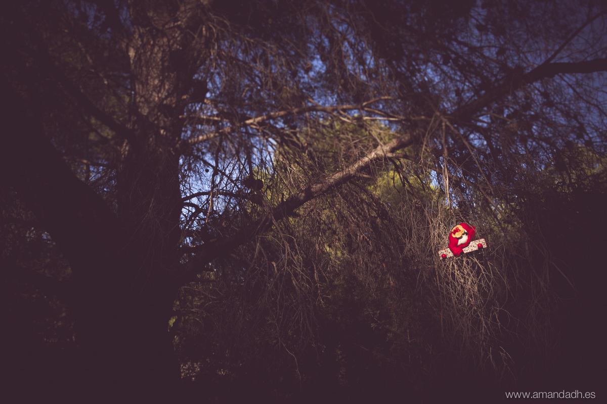 el bosque bocetos-9477