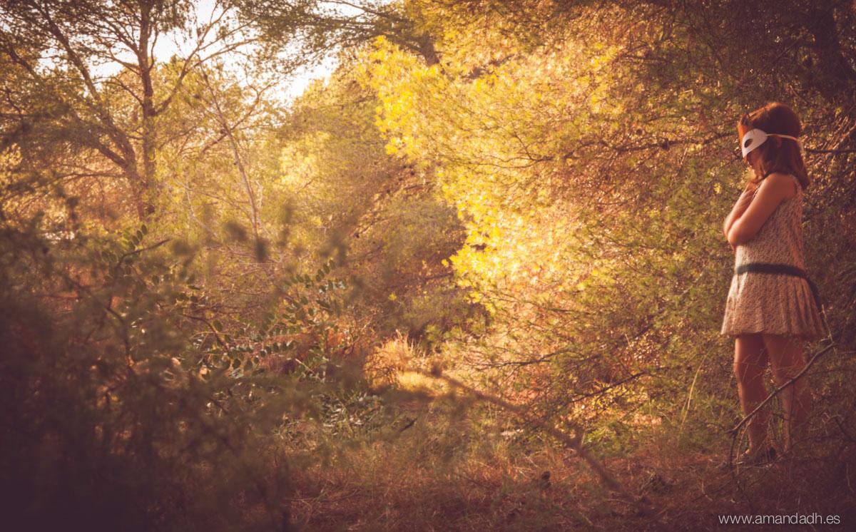El bosque-9424