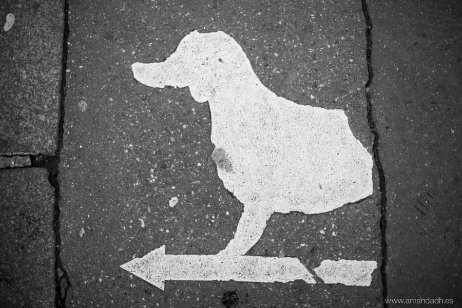 señal de perro en paris