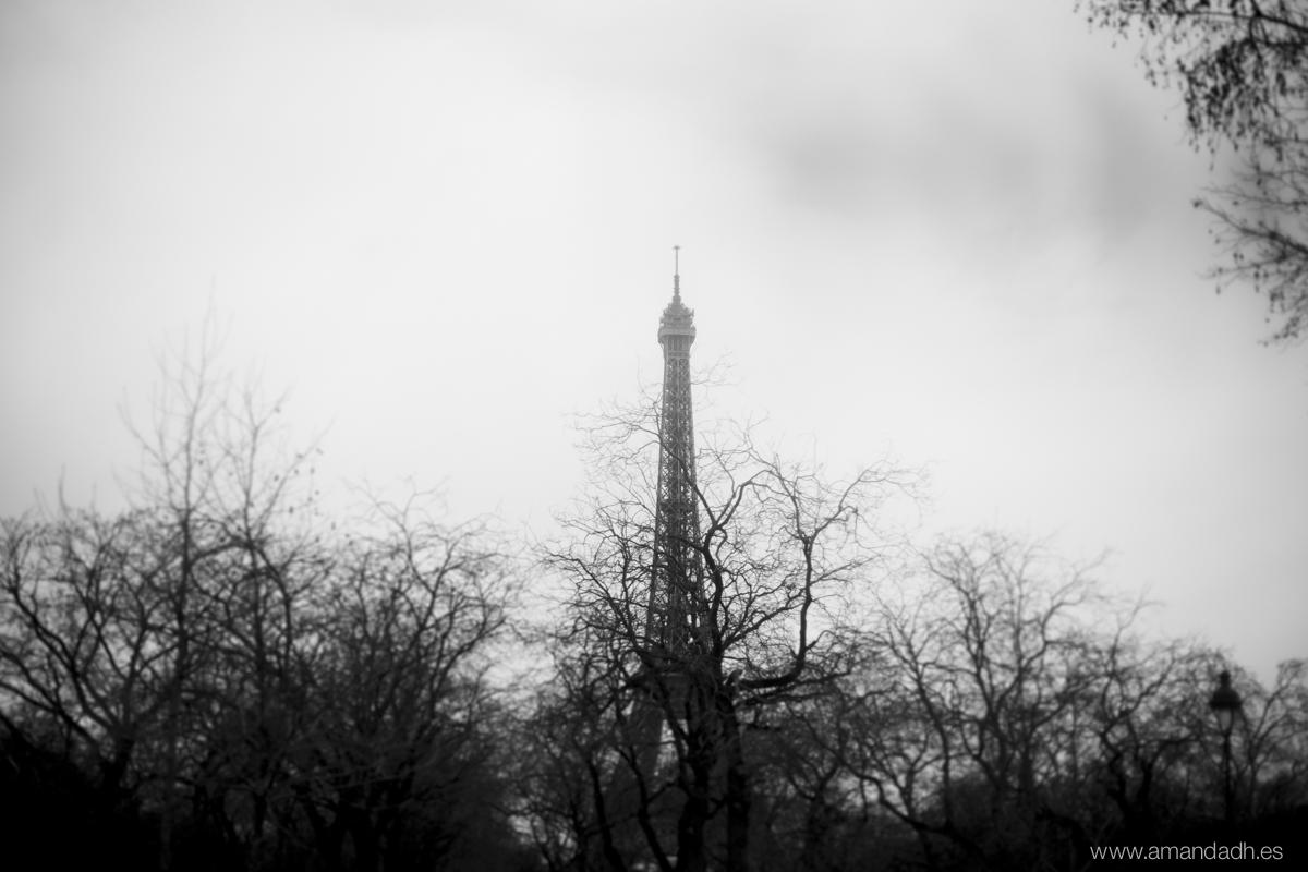 Paris-5953