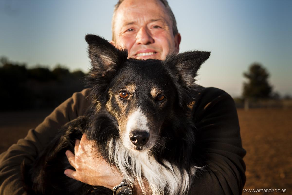 perros pastores